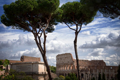 Los pinos de Roma. (Miguel Angel SGR) Tags: pino pine pinetree pines coloseum coliseo roma rome italia italy arboles trees tree city ciudad cityscape cielo sky monumento monuments architecture arquitectura landscape travel trips turismo tourism touring viajes viajar journey trip clouds nubes nikon nikond7200 d72000 miguelangelsgr miguelonphotography