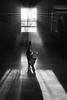 (CMFRIESE) Tags: blackandwhite nikon d810 rayoflight fog trees blinds shadow cast cat feline