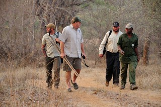 Zimbabwe Cape Buffalo Hunt 76