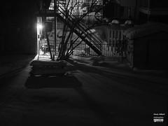 2018-01-07 - Cours du voisin (Denis Hébert) Tags: denishébert anthropogeo faubourgàmlasse centresud montreal montréal québec quebec canada monochrome montrealnight montrealcentresudnight montrealfaubourgàmlassenight ngc newtopographer newtopographic noiretblanc nuitcentresud nuitmontreal nuit nuitfaubourgàmlasse neige bw blackandwhite blackwhite black noir nocolor noircity city extérieur arbres shadowy shadow shadows snow darkandlight dark hiver harmony ombrage ombre urban urbain urbanpoetry tree tranquilité january janvier window winter 2018