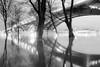 Hochwasser Köln 2018 - 1 (alexanderzs) Tags: köln cologne germany deutschland rhein rhine hochwasser 2018 bw sw bwphotography südbrücke blacknwhite bridge flood highwater river wildriver water night nightcity skyline schwarzweis longexposure langzeitbelichtung mirror canon 35mm 35mm14 pollerwiesen poll kranhäuser kölnerdom noir kölner кельн кёльн германия потоп наводнение мост чб рейн нуар город ночь ночнойгород улица street streetphotography городскойпейзаж cgn
