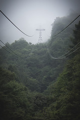fog in the morning (Flutechill) Tags: ropeway foggy fog mist japan lakekawaguchiko kawaguchiko nature mountain forest steelcable electricity powerline cable outdoors landscape tree sky overheadcablecar danger tower scenics blue nopeople tallhigh electricitypylon travel