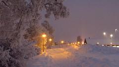 IMG_4346 (Mr Thinktank) Tags: raureif frost