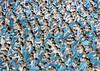 North Korean women dancing in choson-ot during the Arirang mass games in may day stadium, Pyongan Province, Pyongyang, North Korea (Eric Lafforgue) Tags: adultsonly arirang asia asian asianethnicity celebrationevent choregraphy chosonot clothing communism dictatorship dprk festival hanbok highangleview horizontal img5156 joseonoth largegroupofpeople massgames massmouvement multicolored night northkorea northkorean onlywomen patriotism peopleinarow performance performing propaganda pyongyang rungrado show stadium teamwork togetherness traditionalclothing traveldestinations women womenonly pyonganprovince 北朝鮮 북한 朝鮮民主主義人民共和国 조선 coreadelnorte coréedunord coréiadonorte coreiadonorte 조선민주주의인민공화국 เกาหลีเหนือ קוריאההצפונית koreapółnocna koreautara kuzeykore nordkorea північнакорея севернакореја севернакорея severníkorea βόρειακορέα