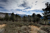 North Side (CameraOne) Tags: southwest hiking mountbaldy california wrightwood raw canon6d canonef17mmf4lusm wideangle cameraone southern nature outdoors mountains snow sundaylights
