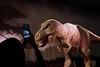 Natural History Museum - London (Magdeburg) Tags: natural history museum london naturalhistorymuseumlondon naturalhistorymuseum naturkundemuseum naturkundemuseumlondon tyrannosaurus rex tyrannosaurusrex τύραννοσ týrannos tyrannus könig despot theropoda king genus coelurosaurian theropod dinosaur