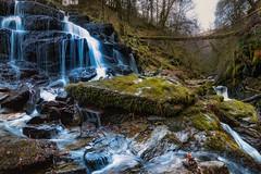 Birks O' Aberfeldy (jasty78) Tags: birksofaberfeldy birksoaberfeldy waterfall longexposure aberfeldy perthshire scotland nikond7200 tokina1116mm