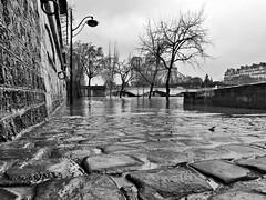 PARIS (dominiquedruon) Tags: dlux 4 paris