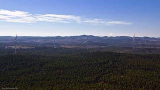 The wind energy