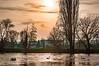 Crépuscule des cygnes, Twilight of swans (laurent.smet) Tags: couchédesoleil paysage sunset landscape