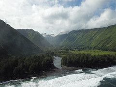 Waipio Drone (8) (BoyUtot) Tags: honokaa hawaii unitedstates waipiovalley waipiofalls waimea surfing hiking trekking dronephotography mavic panasonicgh1 bigisland lumix 100300mm travel nature landscape seascape ramesesmendoza