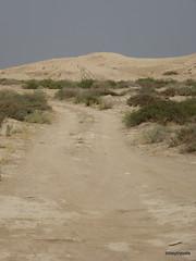 Nippur (1).JPG (tobeytravels) Tags: iraq nippur nibru sumeria sargon akkadian elamites kassite neoassyrian ahurbanipal seleucid ziggurat temple fortress sassanid parthian