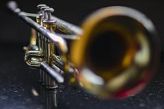 Old Trumpet (MLopht) Tags: musikinstrument instrument trompete musik jazztrompete trumpet canon eos 7d mkii eos7d 85mm bokeh