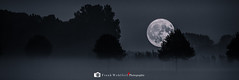 Full moon (mr.wohl) Tags: vollmond fullmoon himmel sky dark darkness dunkelheit nacht night nights moonbeam