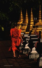 Footloose (J316) Tags: monk priest buddhist buddha orange thailand religion faith stuppa j316 a77 sony hdr feet barefoot footloose gold golden chiangmai legs prayer righteous works