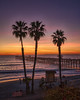 Winter Sunset (Roving Vagabond aka Bryan) Tags: sanclemente california ca socal beach pier orangecounty oc palmtrees sunset lifeguard sky serene clouds cloud landscape seaside seascape tree sea longexposure ocean dusk