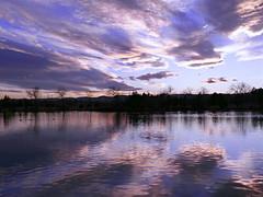 Violet View (Colorado Sands) Tags: lake sunset sky water cloud serene sandraleidholdt lakewood colorado usa belmar