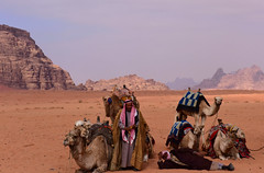 Wadi Rum, Jordan, January 2018 814 (tango-) Tags: giordania jordan middleeast mediooriente الأردن jordanien 約旦 ヨルダン desert wadirum