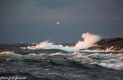 Golten (2000stargazer) Tags: golten golta hordaland norway northsea storm waves ocean seagull light sunshine waterscape landscape nature canon