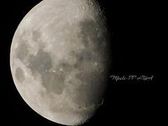 327. FROM ET: Three-Quarter Moon Shot (Meili-PP Hua 2) Tags: macro moon closeup pitted surface moonsurface landscape nightscape nighttime night sky cloudless threequartermoon 34moon nightsky moonscape mooncraters moonshot moonphotography nightphotography surfaceofthemoon halfmoon lunar lunarsurface mlpphlandscape blackwhite whiteblack blackandwhite blackandwhitephotography blackwhitephotography whiteblackphotography bw monochrome monochromatic gray grey white black mlpphbwphotos photographypassionsxyz