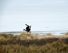 beach day (kaylovesvintage) Tags: beach seaside winter wintertime jump jumping madness fun love nikon sea water sky ocean