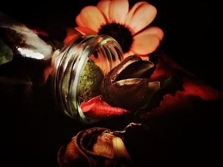 In a bottle - HMM