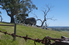 Boulders near the Granite Track (Diepflingerbahn) Tags: lysterfieldparfk granitetrack boulders deadtree tree rustywire fence pasture paddock view landscape panasoniclumixdmctz80