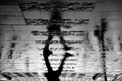 gniklaW (jaume zamorano) Tags: 7dwf blackandwhite blancoynegro blackwhite blackandwhitephotography d5500 ground pluja lleida monochrome nikon noiretblanc nikonistas rain street streetphotography streetphoto streetphotoblackandwhite pov urban