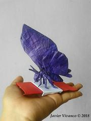 Mariposa 2018 - Javier Vivanco (javier vivanco origami) Tags: mariposa 2018 javier vivanco origami ica peru butterfly