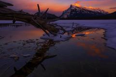 Vermillion lakes (yan08865) Tags: vermillion sunset sky canada water dusk rock sea mounatin banff jasper alberta tree mountain nature lake composition solo