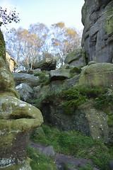 Brimham Rocks (139) (rs1979) Tags: brimhamrocks summerbridge nidderdale northyorkshire yorkshire loversleap