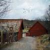 Nyckelviken (Kerstin Frank art) Tags: texture kerstinfrankart buildings houses birds trees nyckelviken stockholm grass sky building tree road yard