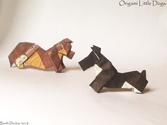 Origami Little Dogs - Barth Dunkan. (Magic Fingaz) Tags: anjing barthdunkan chien chó dog hond hund köpek origami perro pies пас пес собака หมา 개 犬 狗