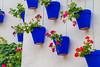 Flower pots on a wall, Barcelona Spain (Maximum YéYé) Tags: géraniums potsdefleurs bleu blue fleurs flowerpot pot flowers flower
