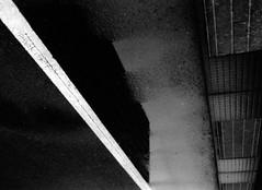 熱伝導率 (thermal conductivity) (Dinasty_Oomae) Tags: konica konical コニカ コニカl 白黒写真 白黒 monochrome blackandwhite blackwhite bw outdoor 東京都 東京 tokyo 千代田区 chiyodaku 大手町 otemachi