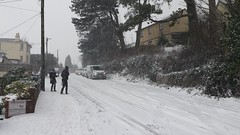 White Out Torbay. (christianiani) Tags: steep hill slippery sliding hazardous snow whiteout cars vehicles torbay