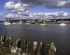 Yacht varieties (Tony Tomlin) Tags: nicomeklriver southsurrey britishcolumbia canada boats yachts portelgin river