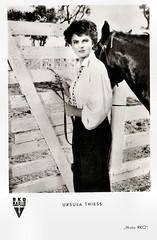 Ursula Thiess in The Americano (1955) (Truus, Bob & Jan too!) Tags: ursulathiess ursula thiess german actress darstellerin schauspielerin actrice european filmstar hollywood moviestar 1950s film cinema cine kino picture screen movie movies filmster star vintage postcard carte postale cartolina tarjet postal postkarte briefkarte postkaart briefkaart ansichtskarte ansichtkaart rko kunstundbild kub theamericano 1955