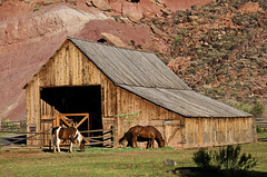 Pioneer Barn (Runemaker) Tags: pioneer barn farm ranch horses gifford fruita capitolreef nationalpark utah building architecture west southwest redrock rural hdr