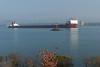 Stewart J. Cort in St. Mary's RIver (KRFoto) Tags: morning ship lakefreighter transportation upperpeninsula timeofday saultstemarie stewartjcort michigan