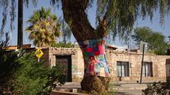 185 Toconao pueblo (roving_spirits) Tags: chile atacama atacamawüste atacamadesert desiertodeatacama désertcôtier küstenwüste desiertocostero coastaldesert