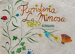 Floristeria! ('cosmicgirl1960' NEW CANON CAMERA) Tags: flowers worldflowers parks gardens nature ojen spain espana andalusia costadelsol travel holidays yabbadabbadoo