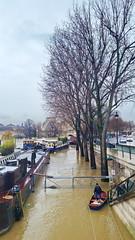 268 Paris Janvier 2018 - la Seine en crue en amont du Pont des Arts (paspog) Tags: paris france janvier january januar 2018 seine crue inondation pontdesarts
