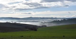 la nebbia agli irti colli...