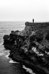 *** (Misha Sokolnikov) Tags: blackandwhite noiretblanc ca california leica leicamonochrom 50mm aposummicron nature ocean pacificocean rock silhouette seagull sea