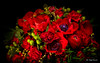 Happy Valentine's Day (Magda Banach) Tags: canon canon80d sigma150mmf28apomacrodghsm valentinesday blackbackground colors flora flower nature bouquet red anemone tulip