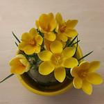 Frühlingsgruß im Büro thumbnail