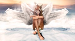 Lumiere divine (Nel4481) Tags: pic l art angel fly gold white second life sl avatar god