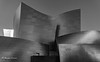 Disney Concert Hall DTLA Los Angeles (bryanasmar) Tags: ngc disney concert hall los angeles dtla sony a7rii 24240 geometry building amazing shape bw color overrated