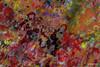 1-2016-11-102  waste , my personal graffiti , collage (profmarilena) Tags: profmarilena artwork painting digitalpainting abstract brightcolors vivid profmarilenasgraffiti